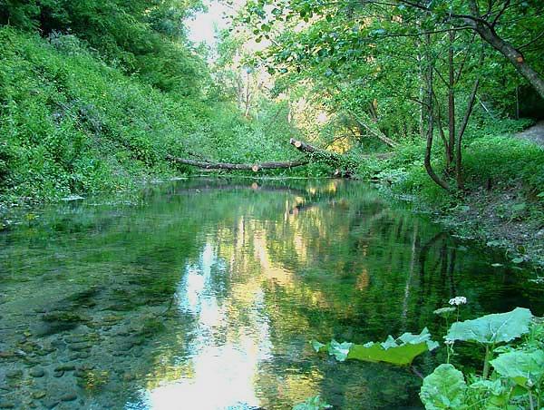 fiume-farfa-1.jpg