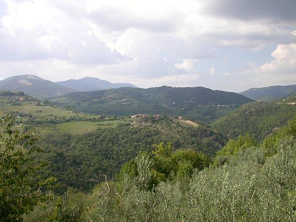 panorama-cesoni.jpg